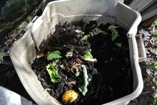 Vermi-compost UMC_usproject2016.com