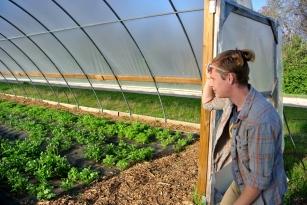 Cardo's farm, Rachel