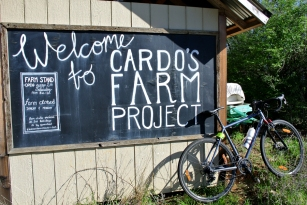 Welcome to Cardo's farm