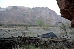 Camp reptilien (I)
