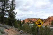 Red Canyons bike trail