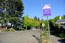 Berkeley Bicycle boulevard