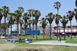 Venice Beach homeless