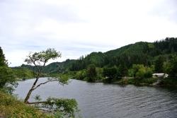 Lake River Florence