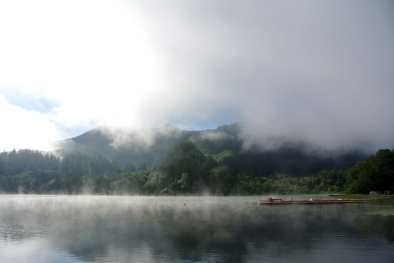 Triangle lake morning