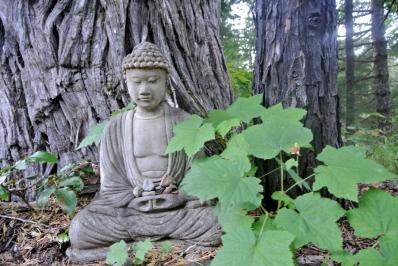 buddha-champetre