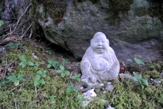 buddha-rieur